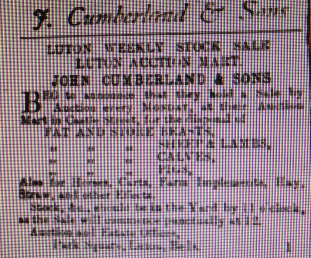 Cumberland advert 4th April 1885 Luton Reporter
