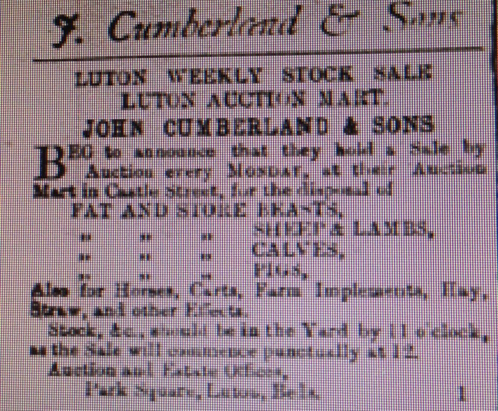 Cumberland advert 4th April 1885 Luton Reporter