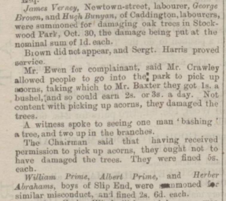 luton-times-12th-november-1880
